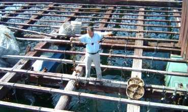 Pescanatur - O GROVE
